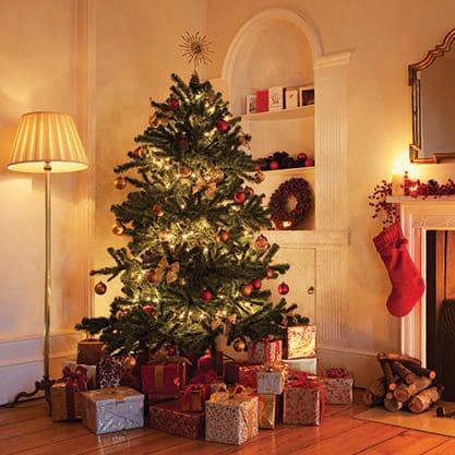 Storie e tradizioni di Natale
