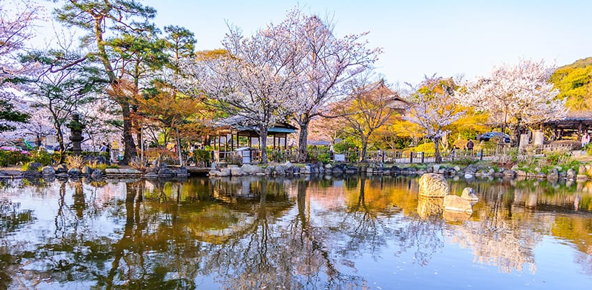 Vacanze di Pasqua 2019: il Maruyama Park a Kyoto