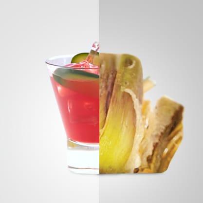 Zen Bitter e carciofi speziali, una ricetta insolita e un cocktail speziato per stupire i vostri ospiti
